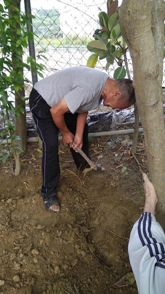 2191018-xingfu-gardening-(1)