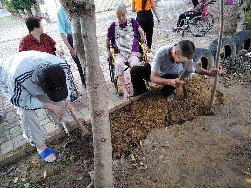 2191018-xingfu-gardening (3)